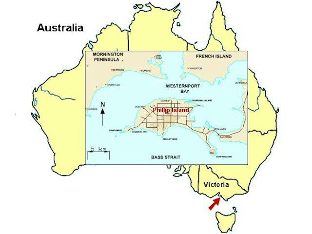 Phillip Island is aproximatley 140km South South East from Melbourne